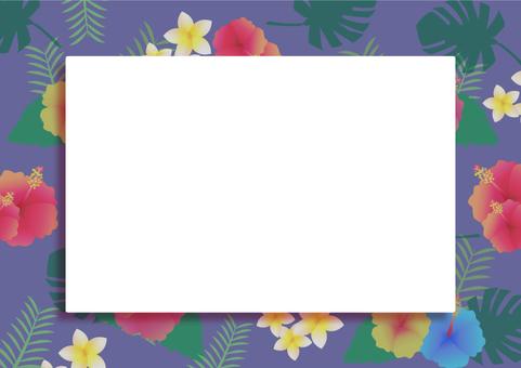 Tropical frame 08
