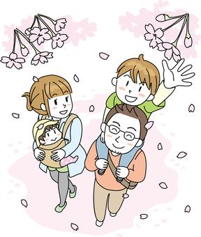 家庭家庭櫻花