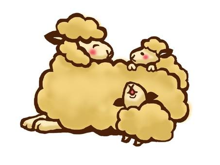 父母和孩子的羊