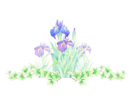 Iris and Ivy ★ 0189-F