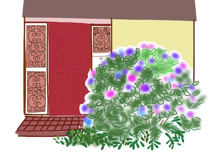 Hydrangea and entrance