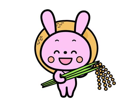 Harvesting rabbit