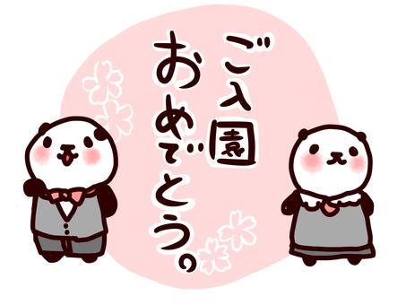 Congratulations on entering the panda