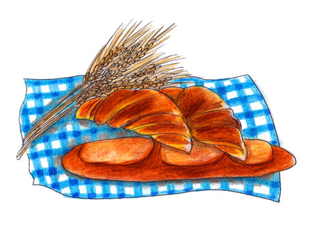 Wheat and bread illustration