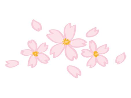 Sakura (marker handwriting style)
