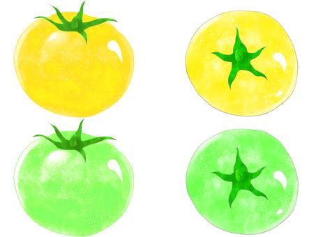 Tomato (yellow / green)