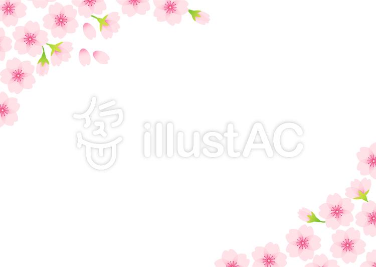 桜フレーム03のイラスト