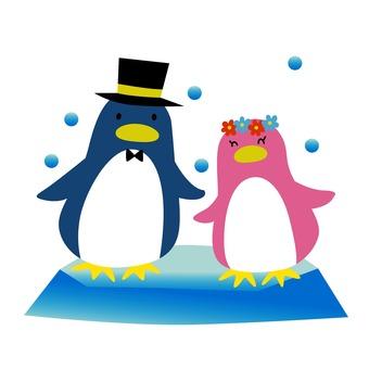 ペンギンの結婚式