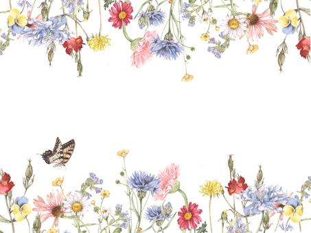 꽃 테두리 175- 우아한 화원의 테두리