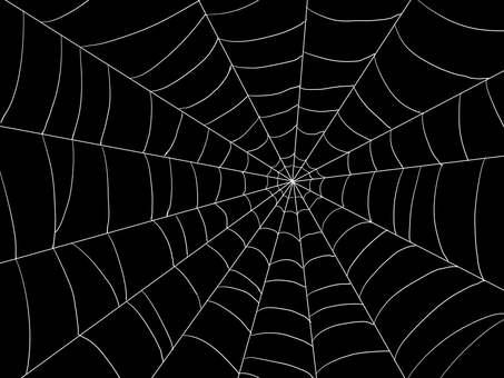 거미줄 흰색