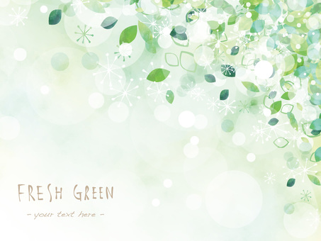 Fresh green frame ver08