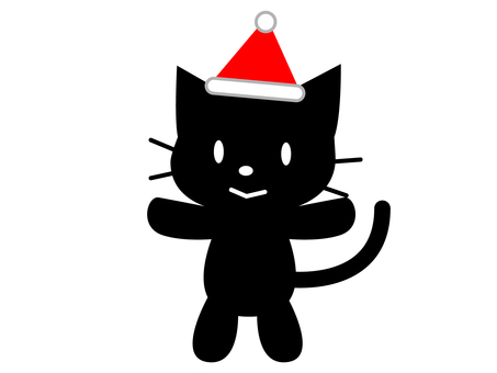 Christmas (cat)