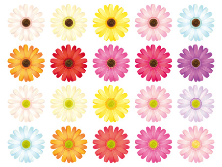 Colorful Gerbera Flower separately Material Collection · Set