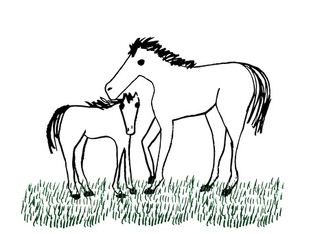 Horse parent and child
