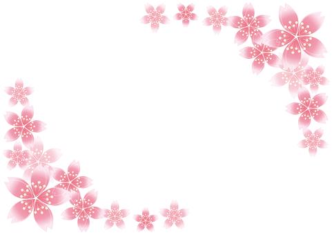 Sakura Sakura 20