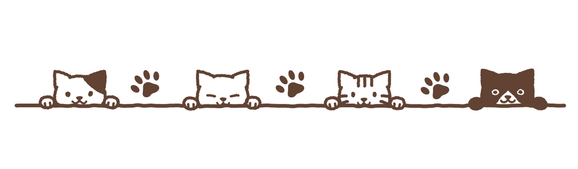 Line of 4 cats