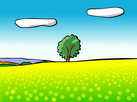 Biei Hill Philosophy Tree
