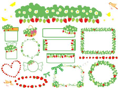草莓花和果實材料