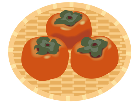 Persimmon _ Persistence
