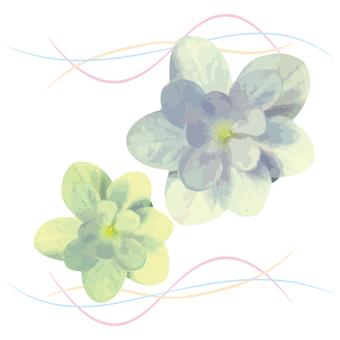 Flower decoration green