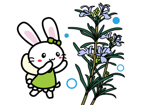 Aroma Usago (Rosemary)