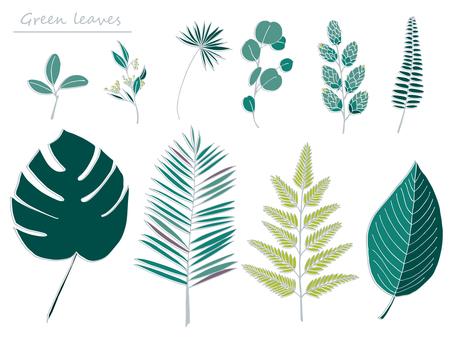 Various leaves Hand-drawn wind illustration 02