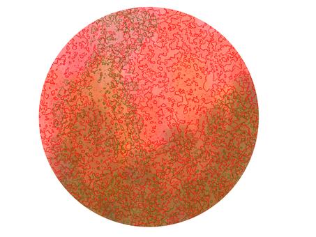 609016-16
