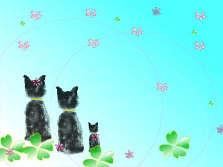 Cat frame 7