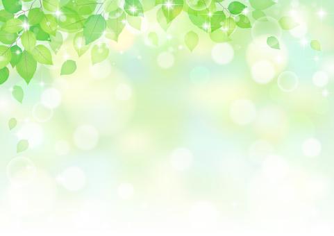 Leaf 313
