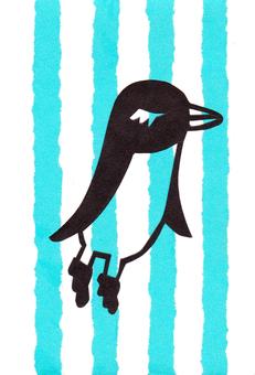 Shimashima Penguin