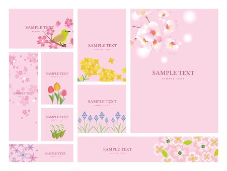 Spring season flower background