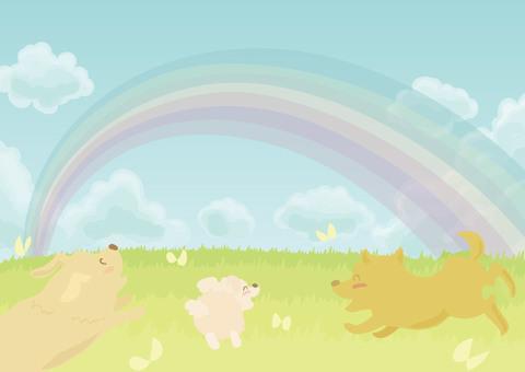 野原と虹とワンちゃん