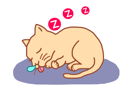A cat that takes a nap