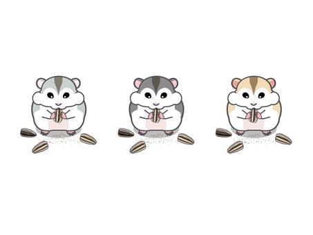 Three kinds of muggling jungalian hamsters