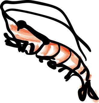 Food _ shrimp