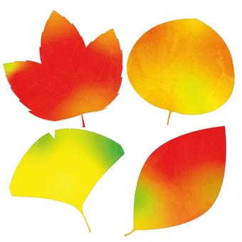 Set of fallen leaves