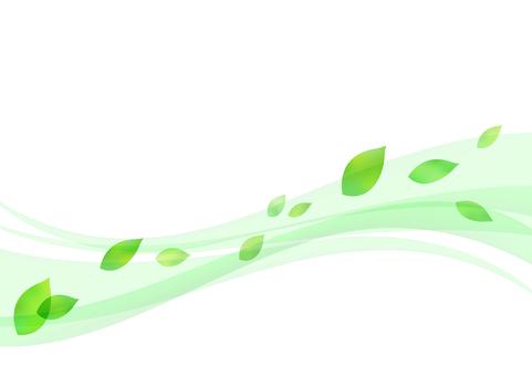 Fresh green material 47