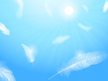 Background of feathers dancing in the sky