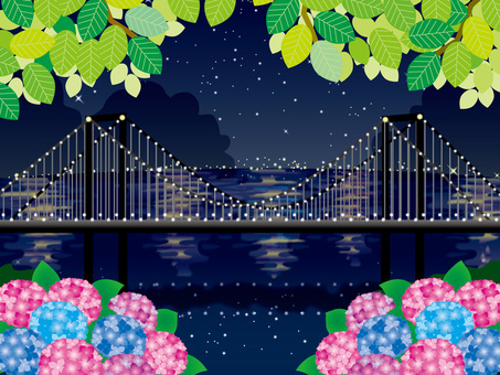 Hydrangea (24) Rainbow bridge at night