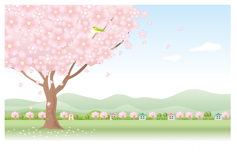 Spring Wind and Cherry Tree