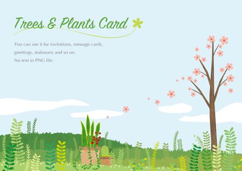Prairie card