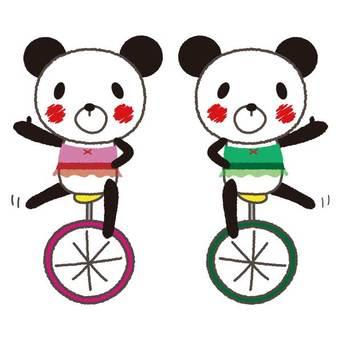Panda unicycle