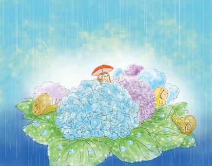 Hydrangea's season