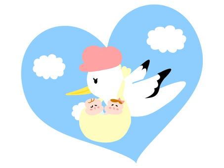 Stork ver03