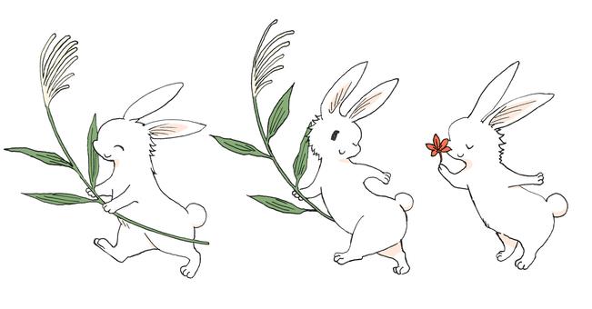 [Correction] Autumn rabbit