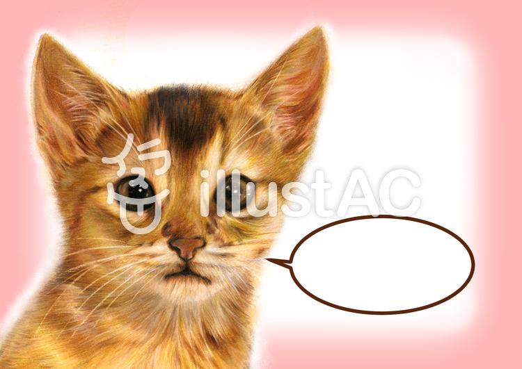 リアルイラスト2(ネコ)のイラスト