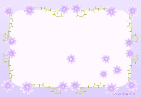 Cosmos violet frame