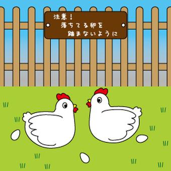 정원에 두 마리의 닭