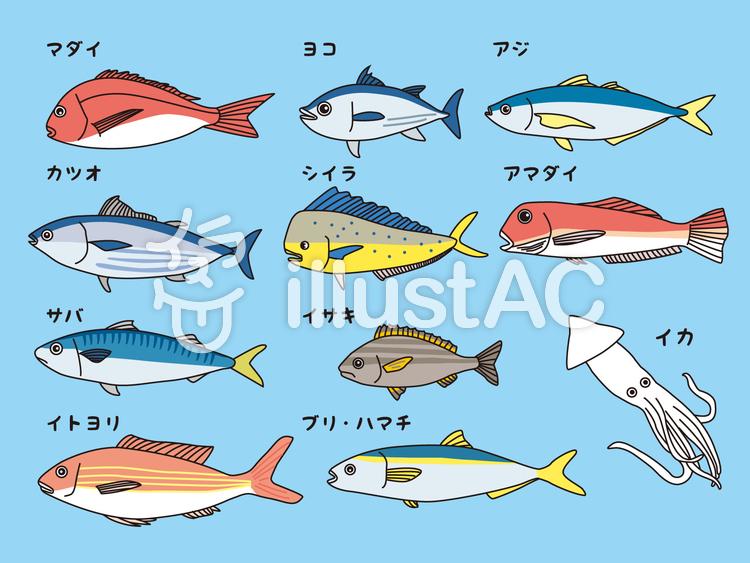 魚のイラストのイラスト
