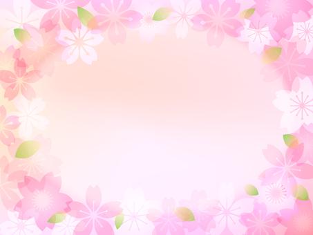 Cherry tree image 009